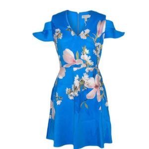 Ted Baker Blue Floral Dress